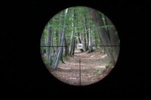 Leica Magnus 1.5-10x42 reticle subtensions