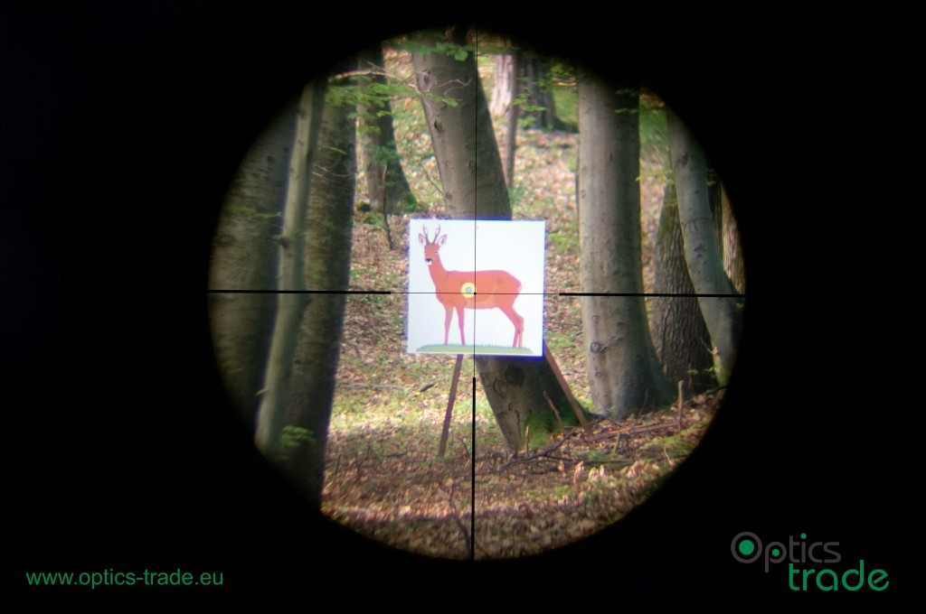 Leica Magnus 2.4-16x56 reticle 4a at 12x
