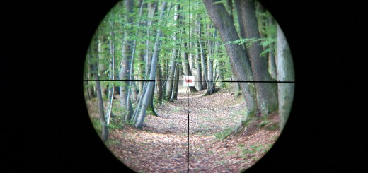 Leica Magnus 2.4-16x56 reticle 4a at 2.4x
