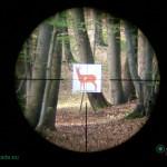 Leica Magnus 2.4-16x56 reticle 4a at 9x