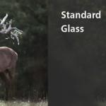 High Transmission SCHOTT glass